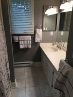 Bathroom remodel and walls painted with Benjamin Moore Bath and Spa.